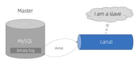 百亿数据,毫秒级返回,如何构建?