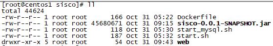 云原生应用11:SpringBoot应用打包成docker镜像_zhuyu19911016520-CSDN博客