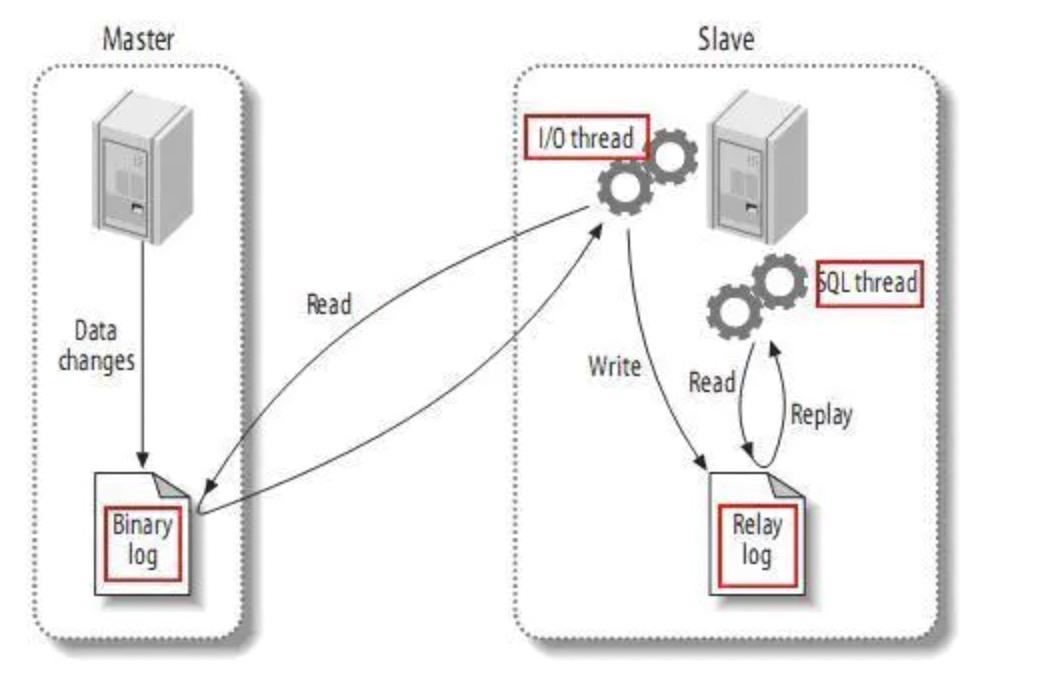 MySQL高频面试题,硬gang面试官